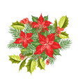 composition of red poinsettia flower isolated over vector image vector image