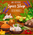 culinary spice herbs cooking seasonings sketch vector image vector image