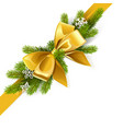 gold bow with fir branch vector image vector image