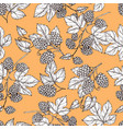 hand drawn hop and foliage seamless pattern vector image