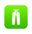 jeans icon digital green vector image vector image