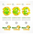 Money symbol infographic vector image vector image
