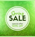 spring sale discount card vector image vector image