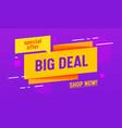 big deal special offer sale banner digital social vector image vector image