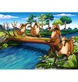 four playful wild animals crossing the river