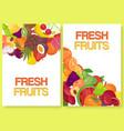 fruit fresh for farm market set banners vector image vector image