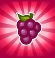 grape icon design vector image vector image