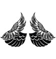 wings vector image
