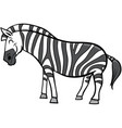 zebra cartoon animal character vector image vector image