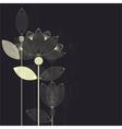 lotus card dark vector image vector image