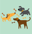 set cartoon dog with bone vector image vector image