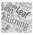 The Turning Leaf Inn Word Cloud Concept vector image vector image