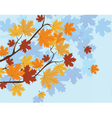 Orange Autumn Maple Leaves vector image vector image