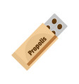 propolis icon flat style vector image vector image