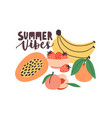 summertime composition with summer vibes vector image