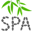 Lettering spa with bamboo leaves vector image vector image