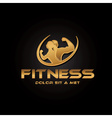 man and woman of fitness golden silhouette vector image vector image