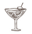 martini cocktail with olives on toothpick in glass vector image vector image