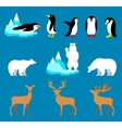 set arctic and antarctic animals penguin