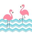 two pink flamingo set blue sea ocean water zigzag vector image