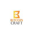 bitcoin craft creative sign vector image
