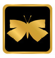 butterfly button on white vector image vector image