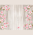 cherry branch with a pink flowers on wooden vector image vector image
