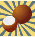 Coconut sectional vector image
