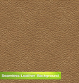 Seamless Leather Texture vector image vector image