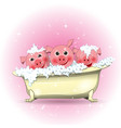 three merry pigs in the bathroom vector image