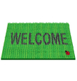 welcome rug vector image vector image