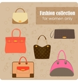 Womens fashion collection of bags vector image vector image