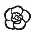 achimenes flower vector image vector image