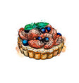 cake with strawberries from a splash watercolor vector image vector image