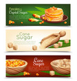 cane sugar banners set vector image vector image