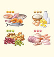 groups of fresh products which contains different vector image