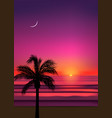 summer tropical beach background with palms sky vector image vector image