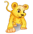 cub on white vector image