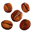 coffee beans painted vector image vector image