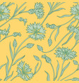 cornflower pattern vector image vector image