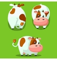 Cute round cow stylized pet Funny cartoon vector image vector image
