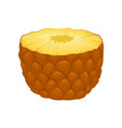 half of juicy pineapple delicious tropical fruit vector image vector image