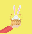 hand holding rabbit in basket vector image vector image