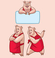 happy pig character in set vector image vector image