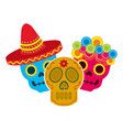 mexican skulls hat flowers decoration vector image vector image