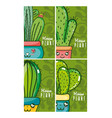 set of cute houseplants cartoon cards on colorful vector image vector image