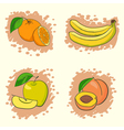 set of fresh fruits vector image vector image
