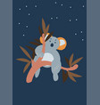 cute koala bear sitting on eucalyptus tree vector image