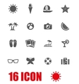 grey sport icon set vector image vector image