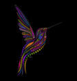 hummingbird in entangle style vector image vector image